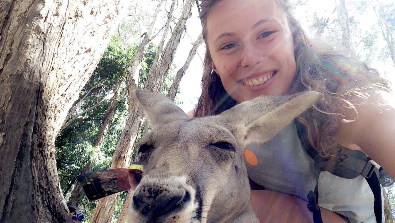 Sarah Tite - Australia-Kangaroo.jpeg
