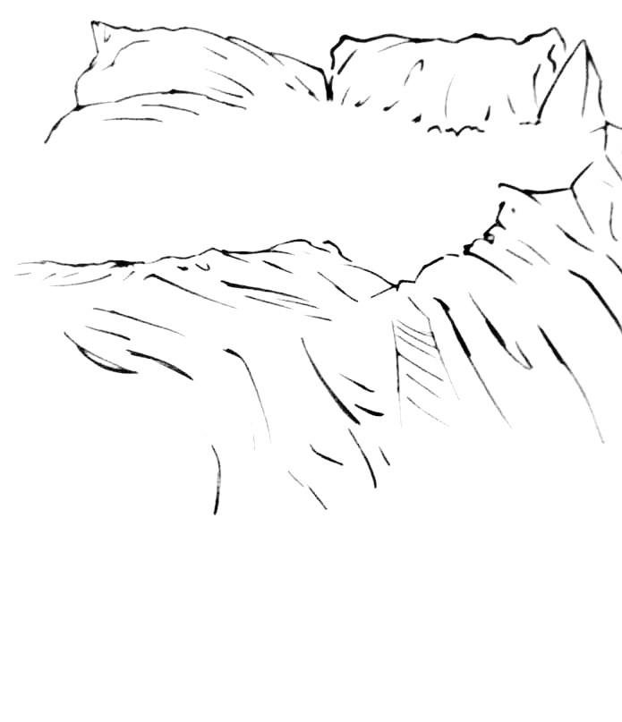 soft image 4